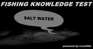 salt water test